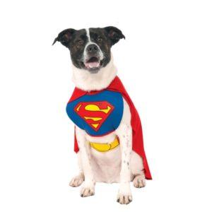Rubies Kostým pro psy - Superman Velikost pro psy: L