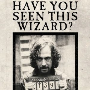 Minalima Pohlednice Harry Potter 3D - Have You Seen This Wizard?
