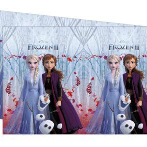 Procos Ubrus - Frozen 2